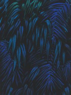 Julien Colombier || 051-deep-blue2
