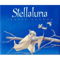Lesson plan on bats that goes with the story Stellaluna. Includes crafts, games, and activites.