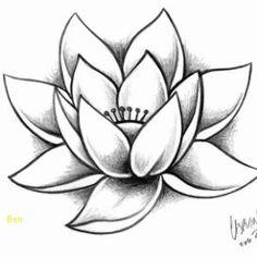 Les 9 Meilleures Images De Dessin Fleur De Lotus Dessin