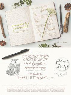 Summer Journal hand