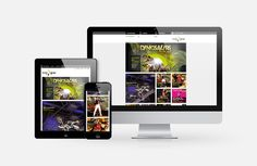 www.mcg.at Web Design, Electronics, Phone, Design Web, Telephone, Phones, Website Designs, Site Design