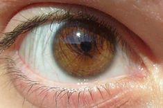Trending Stories that Rises to the Top Dark Brown Eyes, Brown Skin, Long Brown Hair, Dark Hair, Eye Scar, Sun Kissed Highlights, Different Colored Eyes, Tan Skin, Guys