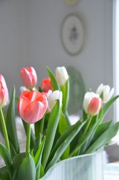 Tulips from mom