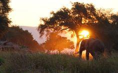 Mana Pools, Zimbabwe