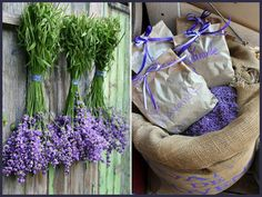 Dropbox is a free service that lets you bring your photos, docs, and videos anywhere and share them easily. Lavender Garden, Lavander, Love Flowers, Ladder Decor, Glass Vase, Herbs, Purple, Plants, Tricks