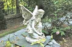 I saw this little fairy while I was on the high road.