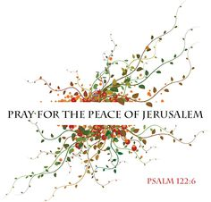 """""""Pray for the peace of Jerusalem: they shall prosper that love thee."""" Psalm 122:6"""