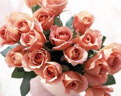 Лучшие фото букетов из тюльпанов и роз