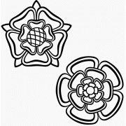 Tudor roses 1