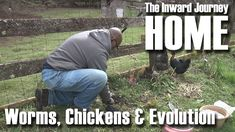 The Inward Journey Home ~ Worms, Chickens and Evolution