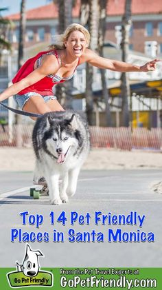 cd9f86131 174 Best Dog Friendly Beach Vacations images in 2019