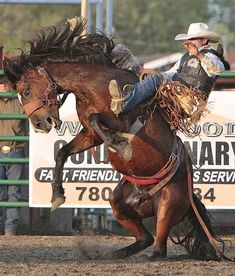 Rodeo Cowboys, Hot Cowboys, Cowboys And Indians, Horse Riding School, Rodeo Time, Walking Horse, Baby Cows, Charro, Bull Riding
