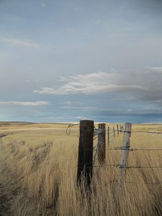 """My novel """"Promise"""" runs through a Midwestern landscape like this ..."""