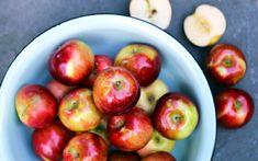 les pommes, que grignoter sans grossir, un fruit, coupe faim efficace pour se rassaisir, pectine, forte teneur en eau