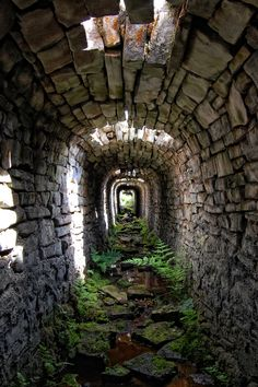 This 'flue' tunnel is one of several in the underground network at Yarnbury Mine in the Yorkshire Dales - part of the finest lead mining remains in England. The flues run from the base of the hill where the lead was smelted up to a central chimney, or 'cupola'. The purpose of these tunnels was to channel the hot gases from the smelting process, allowing them to condense and deposit the precious metal lead along the tunnel walls. The flues would then be blasted with a rush of water from a…