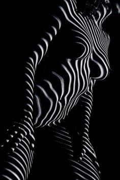 zebra body by Kristian Liebrand Shadow Photography, Erotic Photography, Light Photography, Creative Photography, Black And White Photography, Fine Art Photography, Photography Poses, Chiaroscuro, Drawing Female Body