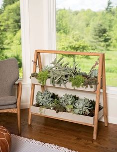 Cool Plant Stand Design Ideas for Indoor Houseplant 26 - Rockindeco Bamboo Plants, Cool Plants, Indoor Plants, Hanging Plants, Potted Plants, Cactus Plants, Garden Plants, Wooden Plant Stands, Diy Plant Stand
