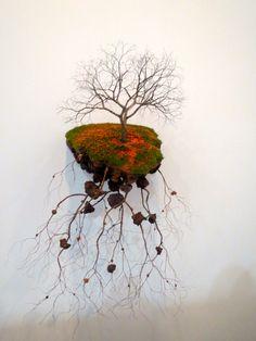 Outro exemplar: linda e mostrando suas raízes… literalmente!