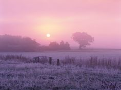 photographic landscapes with pink - Google Search