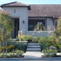 Landscape Lawnless Front Yard Design, Pictures, Remodel, Decor and Ideas - page 2