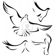 set of flying doves - black vector outlines over white Stock Photo