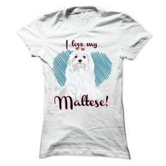 I love my Maltese T Shirts, Hoodies. Get it here ==► https://www.sunfrog.com/Pets/I-love-my-Maltese--Ladies.html?41382