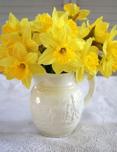 ~ Happy Saint David's Day ~ 1st March ~ my own garden mirrors those of Wales today ~ happy to see those cheerful yellow blooms ~
