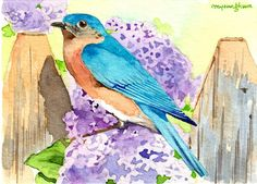 ACEO Limited Edition of watercolor-Spring returns Goldfinch,Gift for bird lover