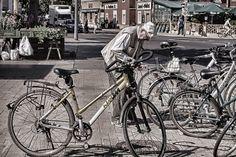 Progetto in gara per il contest MyCitytech, Shoot your New Mobility! Votalo su facebook con un like! https://www.facebook.com/media/set/?set=a.675288582483070.1073741831.617088908303038&type=1
