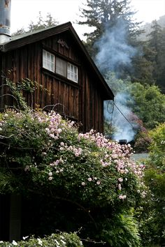 The Ultimate Guide To Exploring Big Sur — Bloglovin'—the Edit