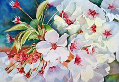 Cherry Blossoms- B Painting by Diane Fujimoto