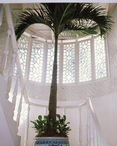 Fretwork Palm