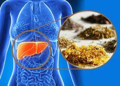 """""""El buen funcionamiento de los ojos, el corazón, el cerebro, las gónadas, las articulaciones y los riñones, dependen todos de la buena actividad del hígado . 9 Hierbas Para Desintoxicar El Hígado"""