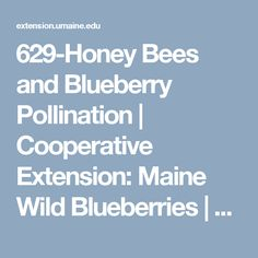 629-Honey Bees and Blueberry Pollination | Cooperative Extension: Maine Wild Blueberries | University of Maine