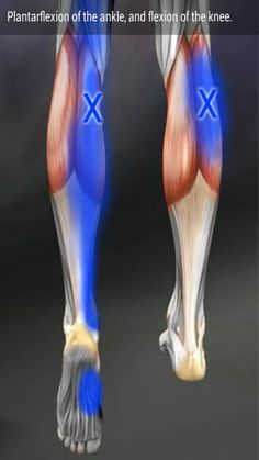 Relieve YOUR joint or muscle pain with The Miracle Wave TODAY! TheMiracleWave.com