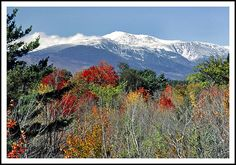 Mount Washington rises to 6288 feet in the White Mountains of New Hampshire. It is the tallest peak in New England. Mount Washington New Hampshire, White Mountains, Tree Line, The Mountains Are Calling, View Image, Dream Vacations, New England, Places Ive Been, Scenery