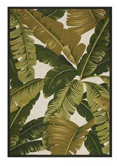 Pindo Area Rug   Outdoor Rugs   Machine Made Rugs   Synthetic Rugs    Tropicalu2026
