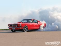 1965 Mustang Fastback burnout