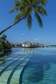 Four Seasons Resort, Maldives--I just really want to stay in a bungalo above the water.maybe in Thailand or Bali instead of the Maldives Vacation Places, Vacation Destinations, Dream Vacations, Places To Travel, Dream Vacation Spots, Places Around The World, Oh The Places You'll Go, Places To Visit, Paradis Tropical