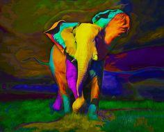 """""""Elefante de Colores""""   Aramis Fraino."""