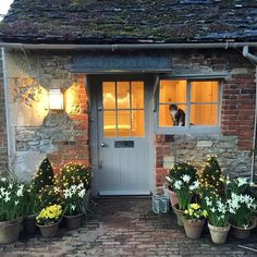 """Gardening till it's dark. Lovely white Narcissus Thalia have taken over from the yellow Tete a Tete around the door #thehatchseend #countryhomes…"""