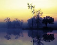 This Sunrise on a Lake Nature Photography was taken on a small lake in southern Louisiana early in the morning. TITLE: Lake Sunrise II LOCATION: Morganville, LA This signed and numbered, limited editi