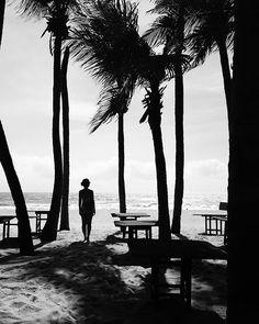 Praia: o vento bagunçando os cabelos, o sol bronzeando a pele, a areia sendo…