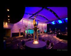 Corporate Event: Journey to Atlantis at the Atlanta Aquarium. J Patrick Designs