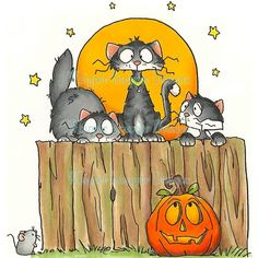 Fraidy Cat Halloween