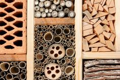 Insect hotels provide shelter and home environments for countless beneficial insects, and are fun winter projects to make in anticipation of spring's return.