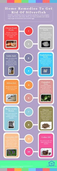 18 Natural Ways To Get Rid Of Silverfish: This Guide Shares Insights On The Following; How To Kill And Get Rid Of Silverfish Naturally, Essential Oils To Get Rid Of Silverfish, What Attracts Silverfish, How To Get Rid Of Silverfish Home Remedies, Silverfish In Bed, Natural Silverfish Repellent Spray, Silverfish Eggs, Do Silverfish Eat Clothes, Etc.
