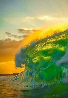 Surf All Day! Party all night! The Green Goblin by No Wave, Water Waves, Sea Waves, Sea And Ocean, Ocean Beach, All Nature, Amazing Nature, Beautiful Ocean, Beautiful World
