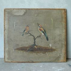 Small 18th c. Painting of Birds