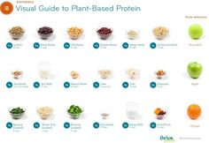 Whether you are a vegan or not, having a visual guide to portion sizes is so handy.